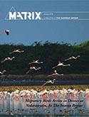 Matrix January 2018