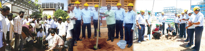 planting a tree at Chemplast